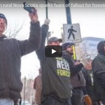 Mill closure in rural Nova Scotia sparks fears of fallout for forestry industry